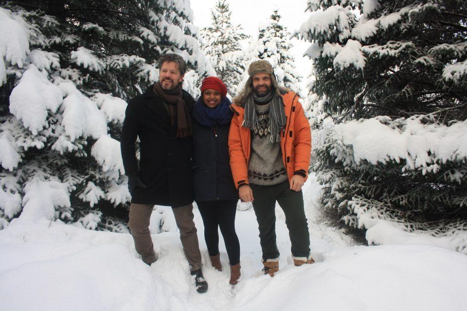 Oslóartré fundið fyrir 2016