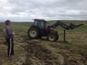 Múlastaðir, Laugardagsverk, girðing_25062016HGS (4)