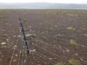 Múlastaðir, Rafgirðing_30062016HGS (5)