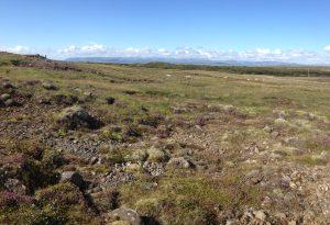 Múlastaðir, smalað, Jónas í mynd _18082016HGS (4)