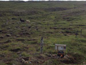 Múlastaðir_Smölun 27072016HGS (5)