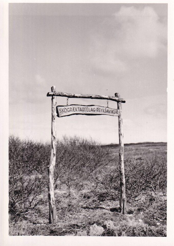 Skilti við landnemaspildu Skógræktarfélags Reykjavíkur í Heiðmörk. Myndin er tekin um 1950.